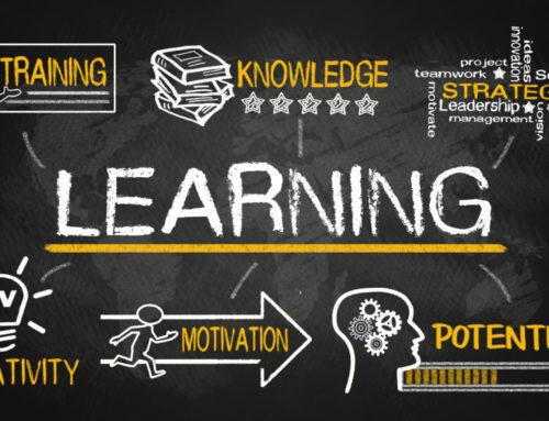 Программы обучения и профессии в области ЭО и ДОТ
