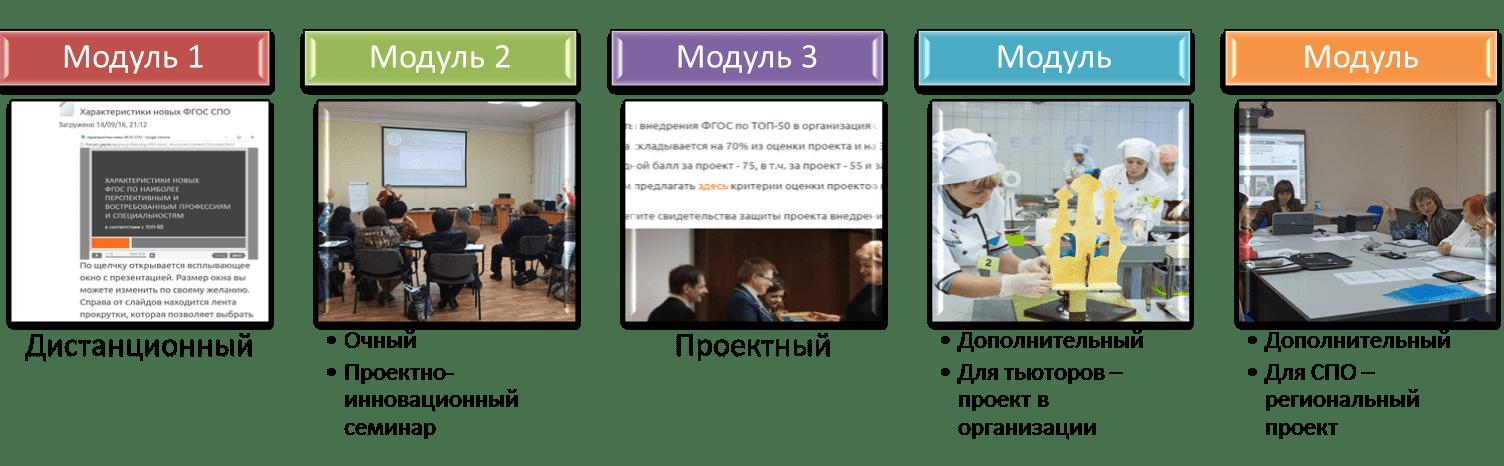 Организационно-методическое сопровождение внедрения ФГОС по ТОП-50