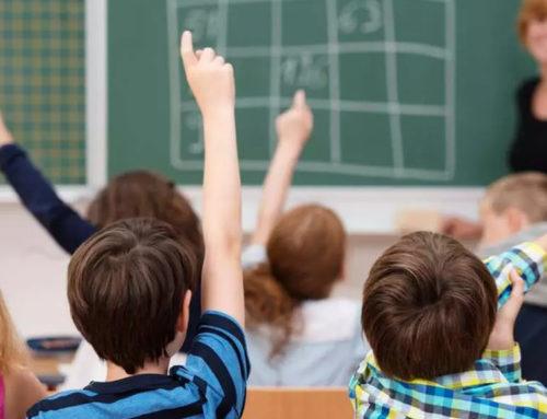 Учат в школе… Чему?