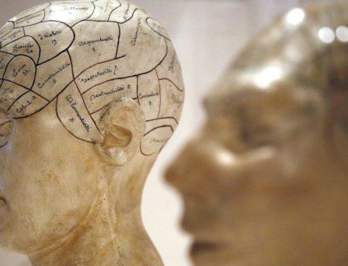 Новая теория о том, как эволюционировало сознание