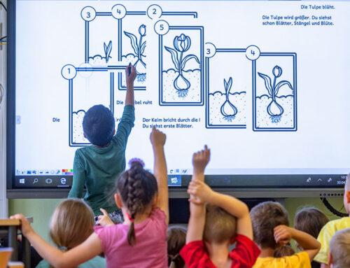 Рейтинг от надзирателей за школьным образованием: хотели как лучше…